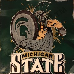 17 - MSU - Sparty - 20in x 20in